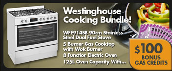 Westinghouse WFE914SB Dual Fuel Stove